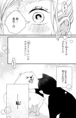 猫とキス9話